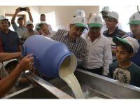 Başkan Ataç'tan Dünya Süt Günü mesajı