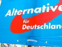'Almanya, AB'den çıksın, marka geri dönsün'