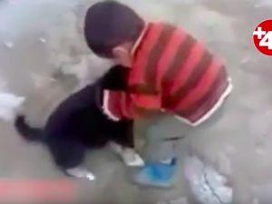 Köpek çocuğu, çocuk da köpeği böyle ısırdı